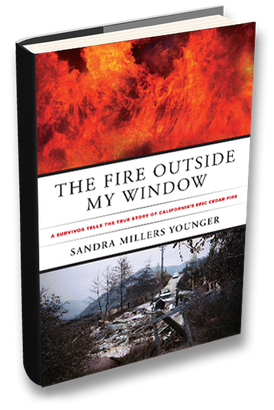 """The Fire Outside My Window"" book cover"